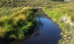 Opinion: An ecologist's perspective on stream diversions