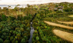Long Bay: a development informed by ecology and sustainability